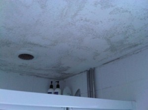 Condensation in bathroom / shower room - The Preservation Company